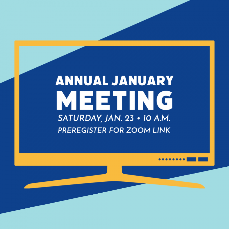 Annual board meeting to be held virtually
